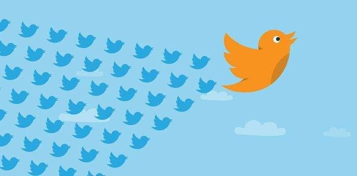 Twitter para posicionamento de freelancers