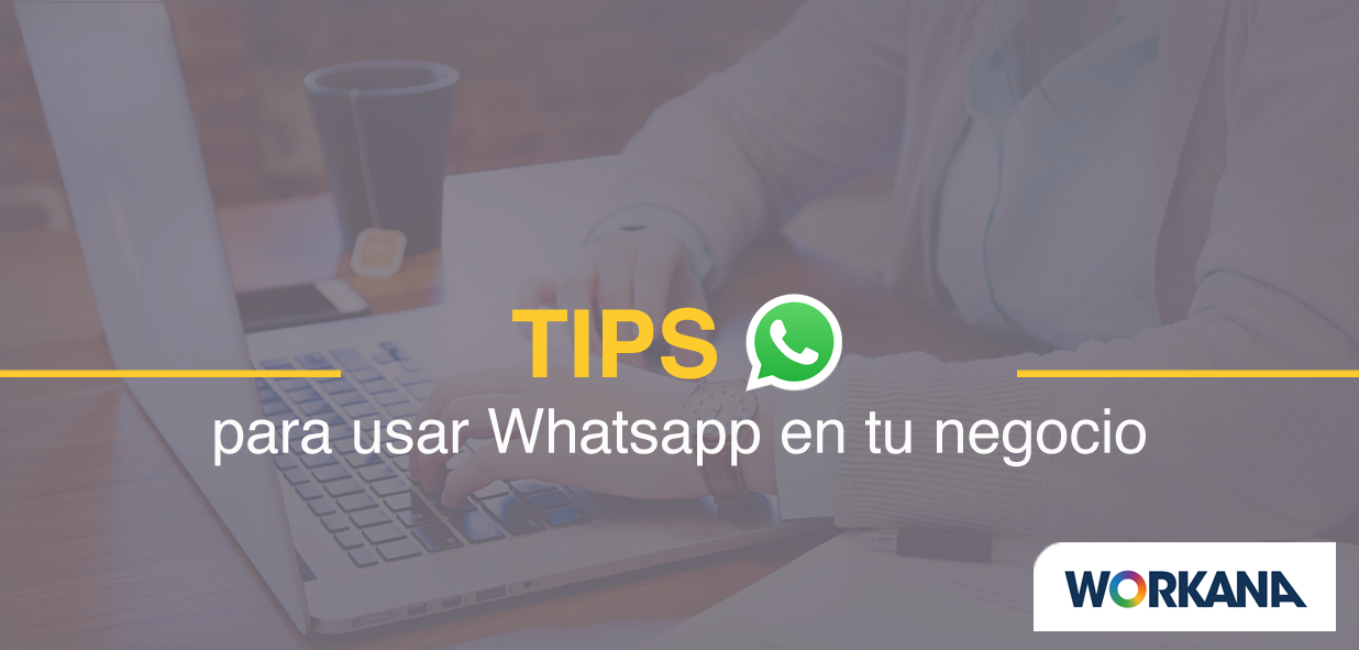 Cómo usar WhatsApp Web y WhatsApp Business en una empresa: la guía definitiva