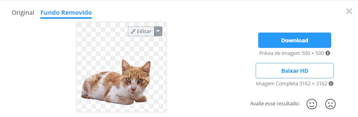 deixar fundo transparente de imagem no RemoveBG