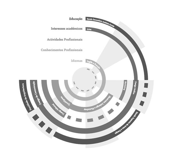 exemplo de CV infográfico no Behance